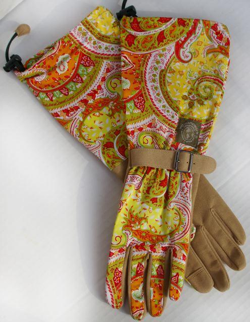 2011-11-24-705_Paisley_Glove.jpg
