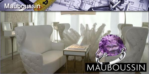 2011-12-15-Mauboussinpanel2.jpg