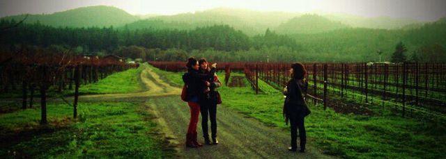 2011-12-24-images-vineyard1.jpg