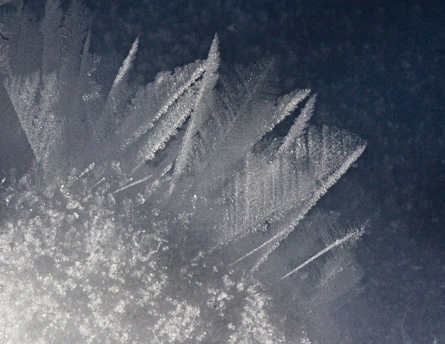 2011-12-31-FernCrystal16x4.5.jpg
