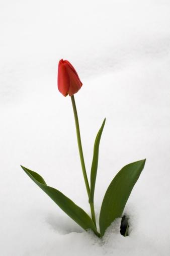 2012-01-03-114351613.jpg