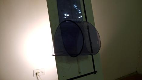 2012-01-13-L1060047.JPG