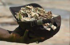 2012-01-14-Liberiaoldwoodbecomesrenewablefuelmajorexport.jpg