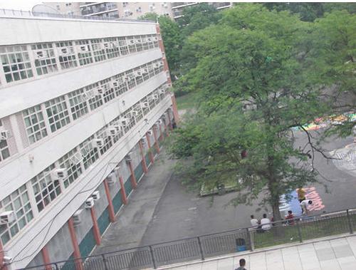 2012-01-17-cmrubinworldNYCschools2500.jpg