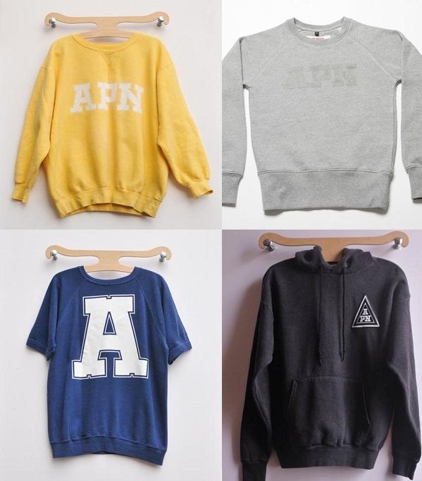 2012-01-24-Sarah_McGiven_FightForYrWrite_APN_A_Public_Nuisance_clothing_sweatshirts_vintage_new.jpg