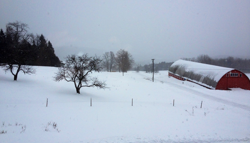 2012-01-31-ScreenShot20120131at12.21.11PM.png