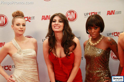 2012-02-01-avnawards.jpg