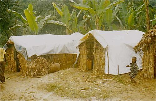 2012-02-03-huts_walikale.jpg