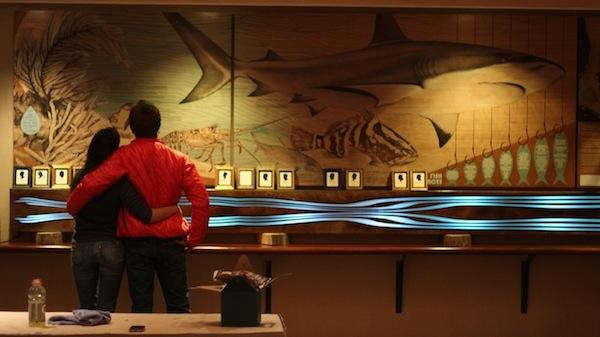 2012-02-08-sharkpicture.JPG
