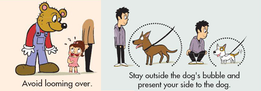 how to get a dog to stay