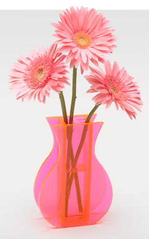 2012-02-13-Flowers2.jpg