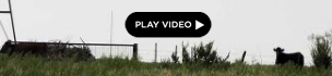 2012-02-15-Screenshot20120214at8.30.27PM.png