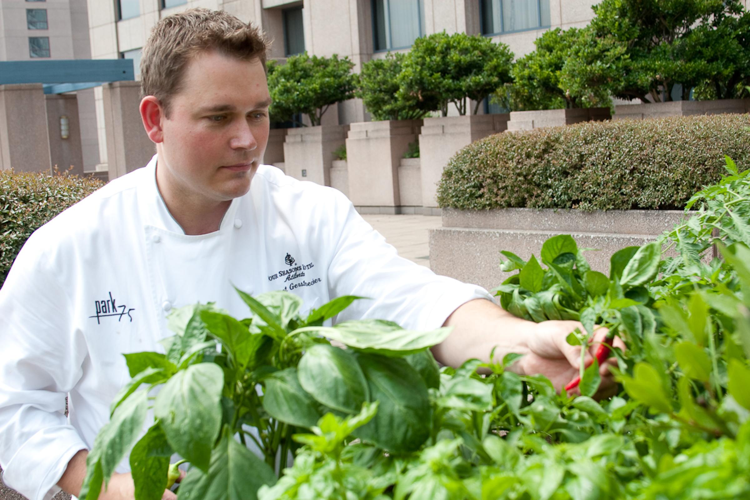 2012-02-20-Chef_Robert_Gerstenecker_Rooftop_Garden.jpg