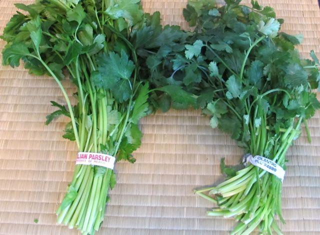 2012-02-21-guacamolecilantroandparsley.jpg
