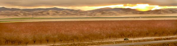 2012-02-22-Ecofarm0922b.jpg