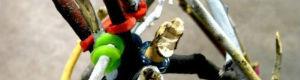2012-02-22-pullquote1.jpg