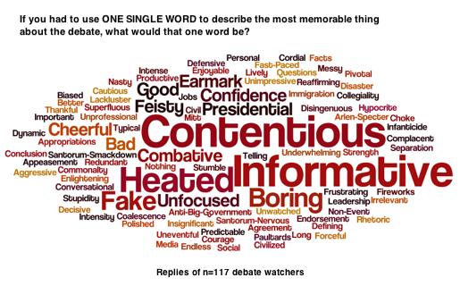 2012-02-23-Blumenthal-Debatewordcloudsml.png