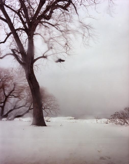 2012-02-28-Untitled10192.jpg
