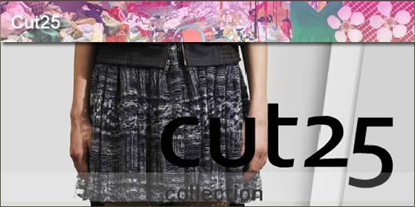2012-03-10-Cut25panel1.jpg