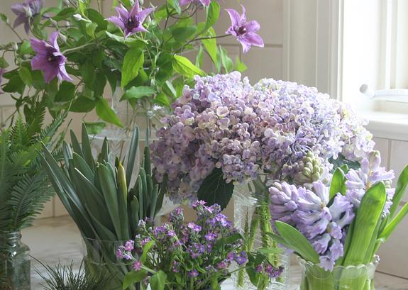 2012-03-22-flowerspurple.jpg
