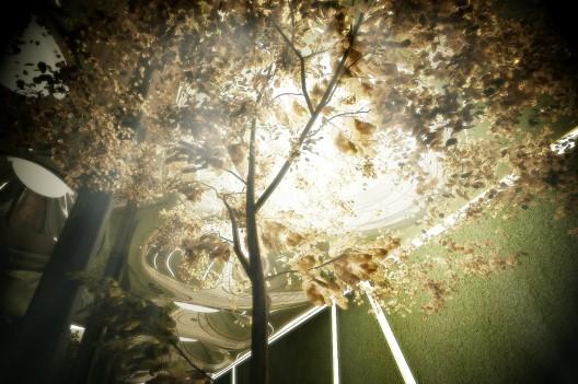 2012-03-26-cure6.jpg