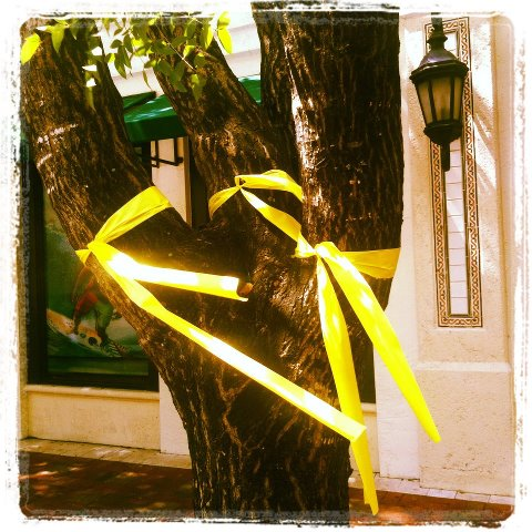 2012-03-26-treesribbons.jpg