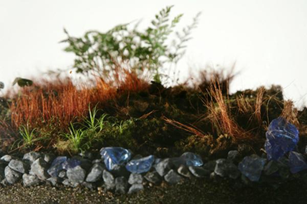 2012-04-05-terrarium.jpg