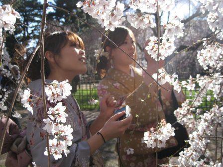 2012-04-08-twogeishas.jpg