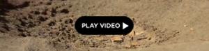 2012-04-17-sudanScreenshot20120417at1.04.31PM.jpg