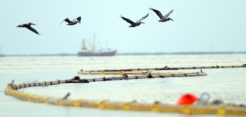 Boom and skimmers line the coast at Grand Isle, La., where workers clean up after the BP Deepwater Horizon oil disaster.