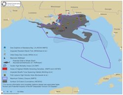 Gulf Impacts Map