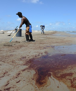 Workers use rakes to clean up oil after the BP Deepwater Horizon oil disaster