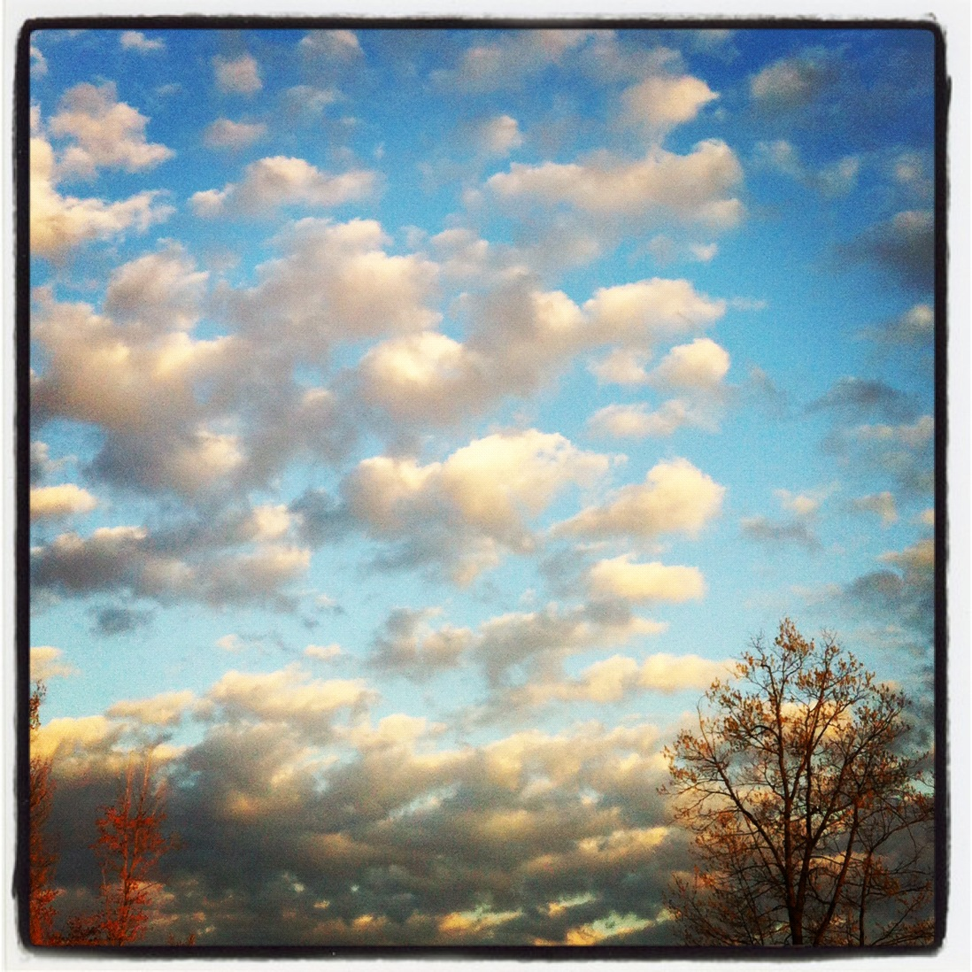 2012-04-24-CloudArtAmyNeumann.JPG