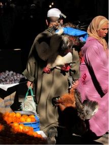 2012-04-30-morocco9.jpg