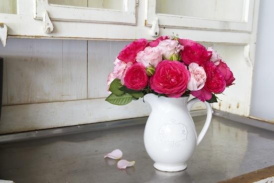 2012-05-02-Roses_1153.jpg