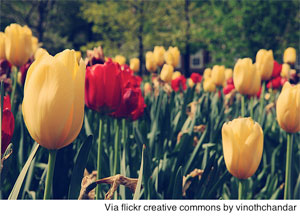2012-05-02-floralmoms.jpg