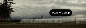 2012-05-02-videopull.jpg