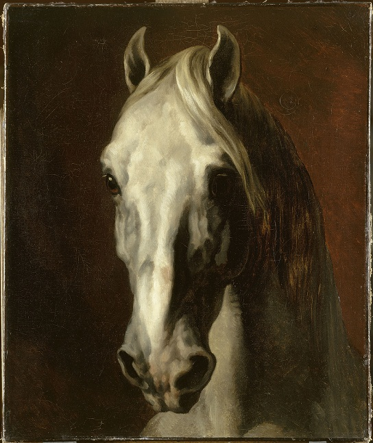 2012-05-07-hdgericault_tete_cheval_blanc.jpg