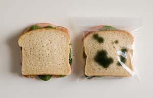 2012-05-09-sandwiches.jpg