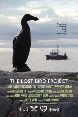 2012-05-23-24x36_Poster_LostBird_PBIFF1.jpg