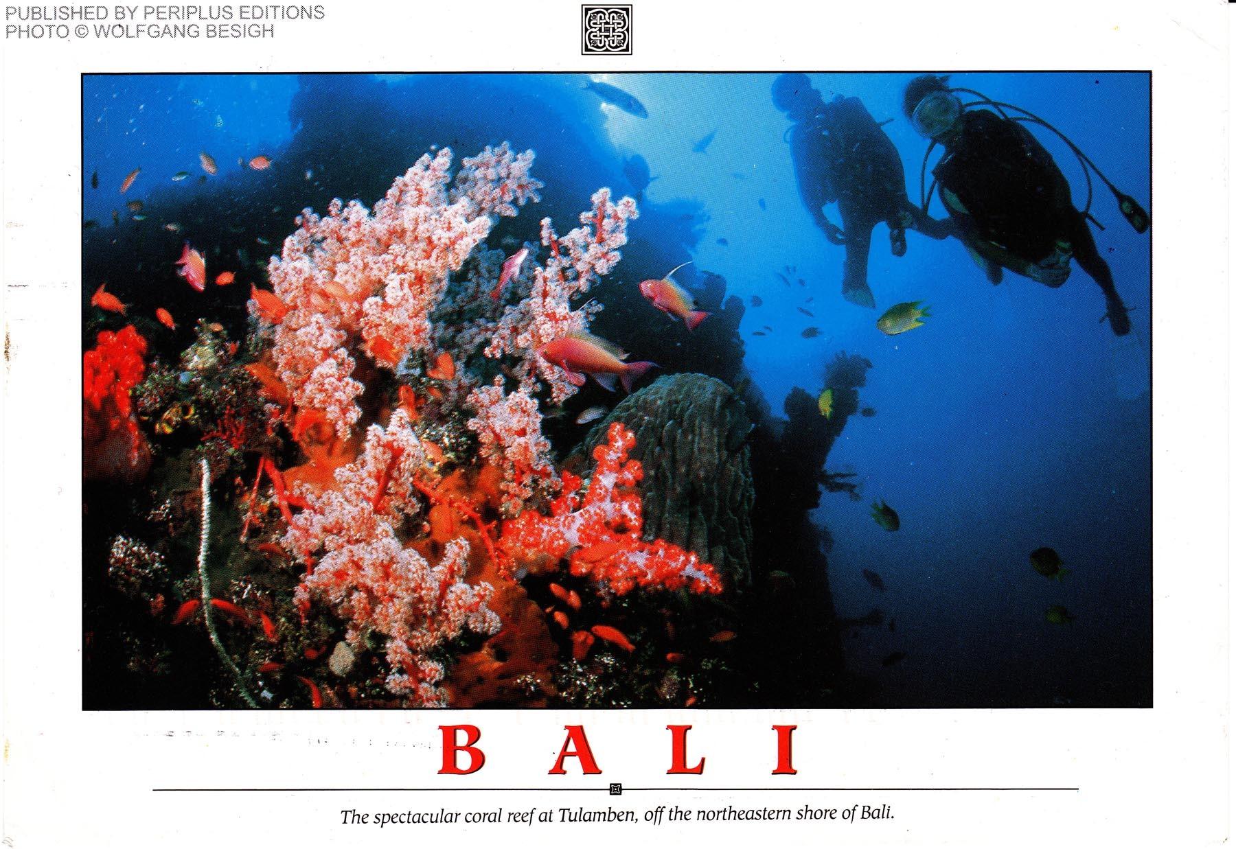 2012-05-29-BaliPostcardFront.jpg