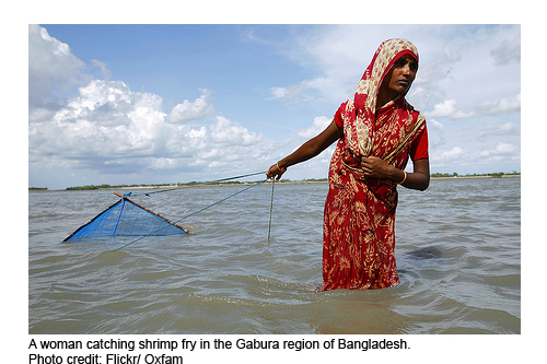 2012-05-30-woman_bangladesh_shrimping.jpg