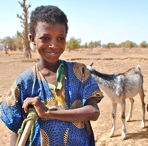 2012-06-22-PicturesCounterpartMauritania1.jpg