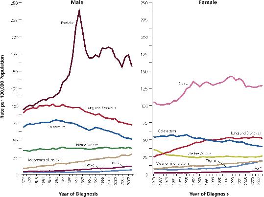 2012-06-29-graf1.png