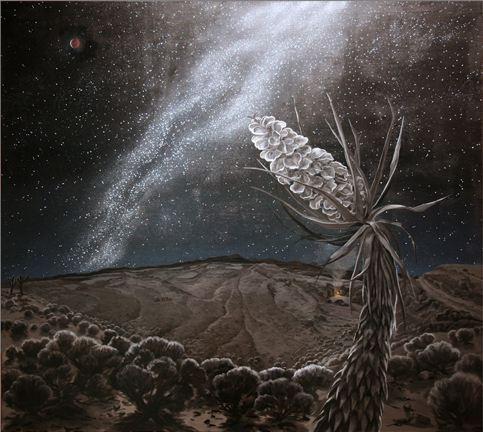 2012-07-07-desert_stars.JPG