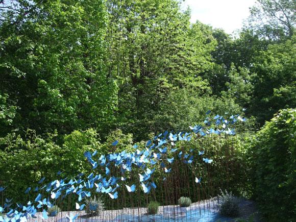 2012-07-12-Papillonsbleus.jpg
