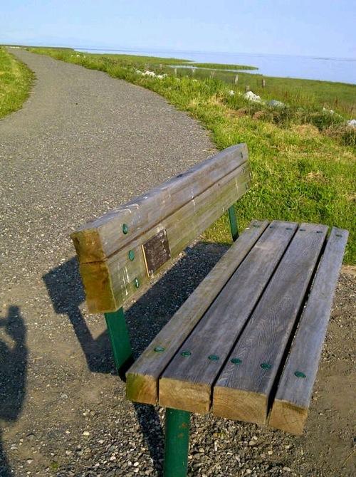 2012-07-12-benchnear.JPG