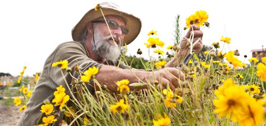2012-07-22-Homelessgarden4140.jpg
