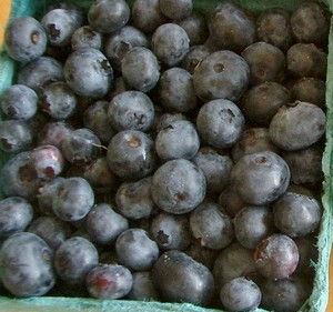 2012-07-25-AccidentalLocavoreNJBlueberries.jpg