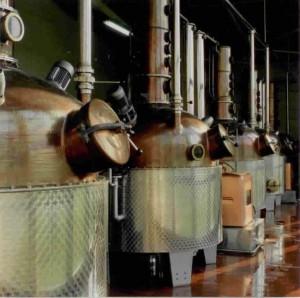 2012-07-28-DistillerieMassenez.jpeg